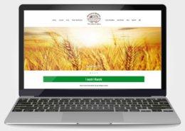 Realizzazione sito web Macinazione Lendinara